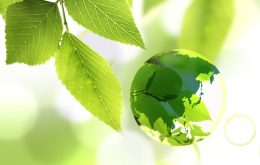 Konsultan ISO 14001:2015 Jakarta