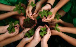 Training Audit ISO 14001 Jakarta